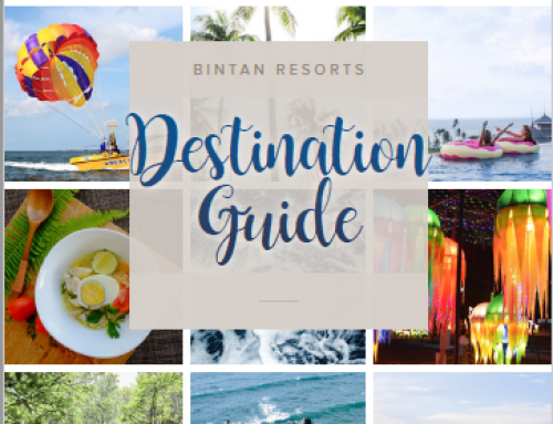Destination Guide 2017 (English)