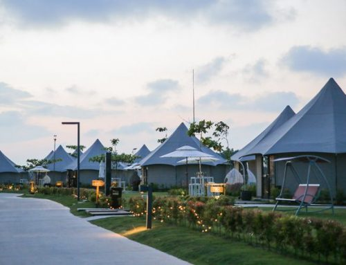7 Reasons Why Bintan Is a Hot Spot for Nature Lovers