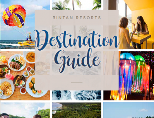Destination Guide 2019 (English)