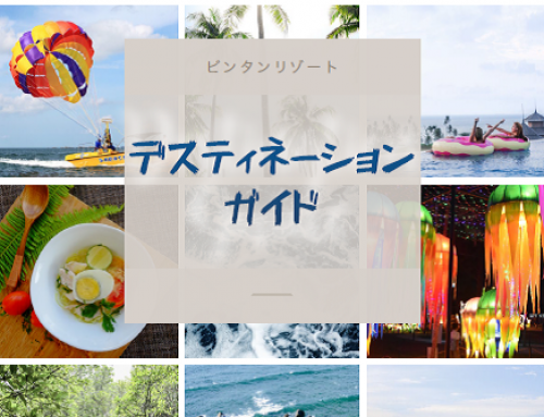 Destination Guide 2017 (Japanese)