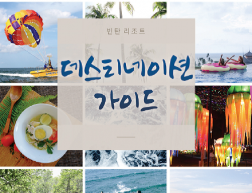 Destination Guide 2017 (Korean)