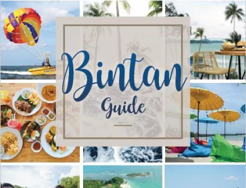 Bintan Guide 2020 (Korean)